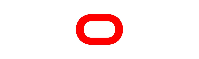 Déclinaisons du logo Bochassy
