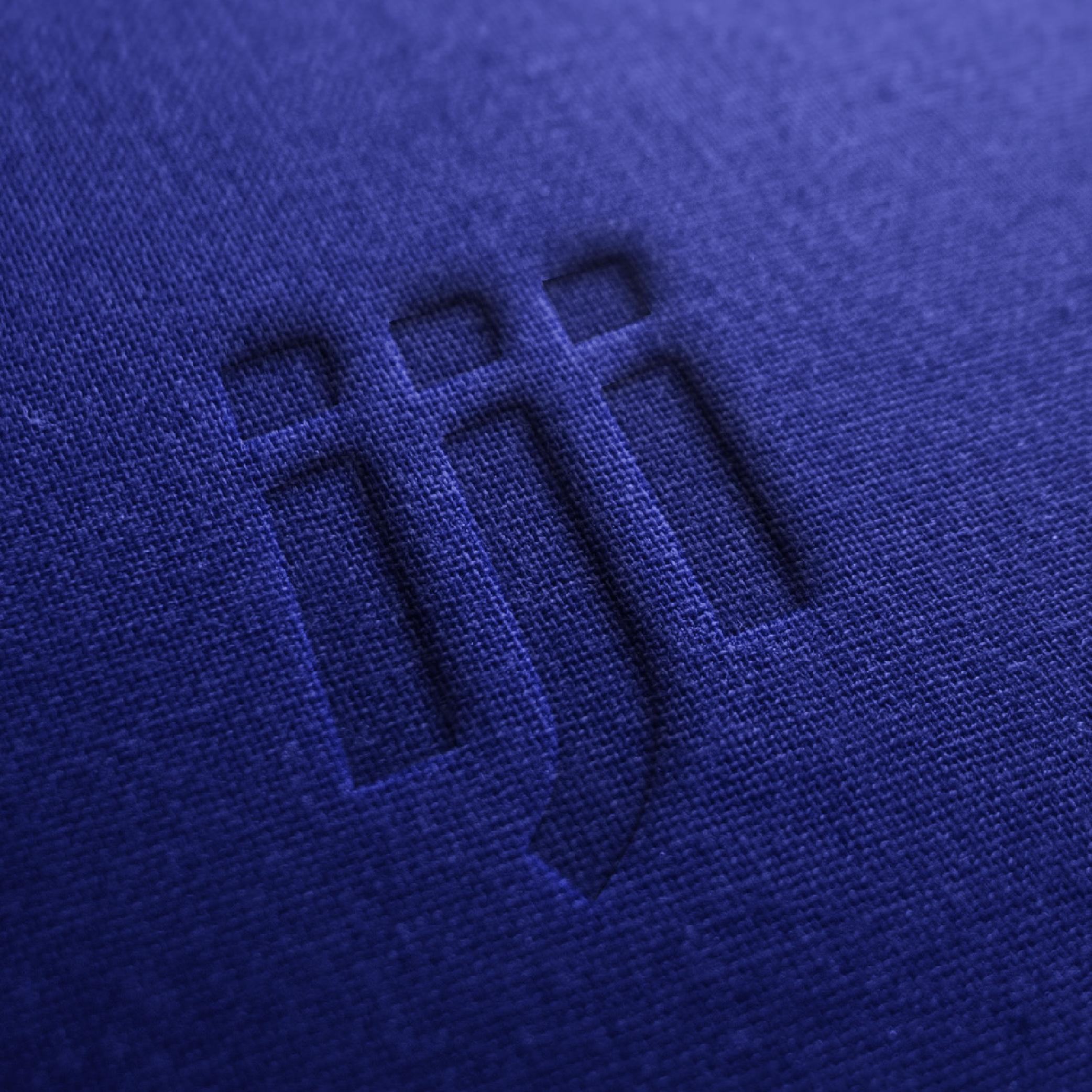 Logo iji