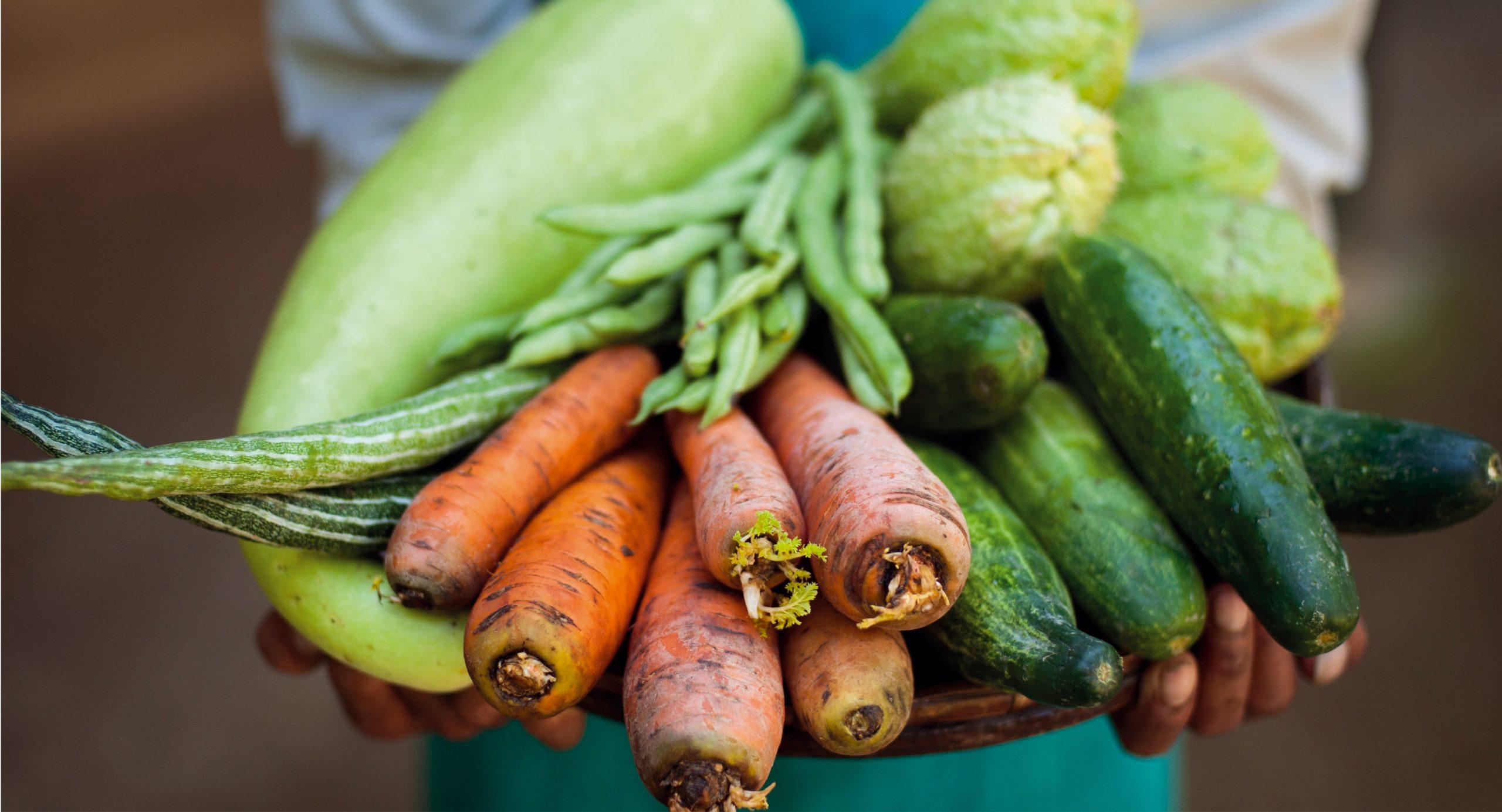 Légumes du MiN de Nantes Métropole